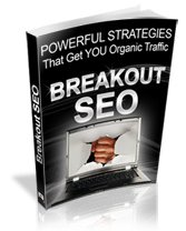 Powerful Strategies to Attract Organic Search Engine Traffice